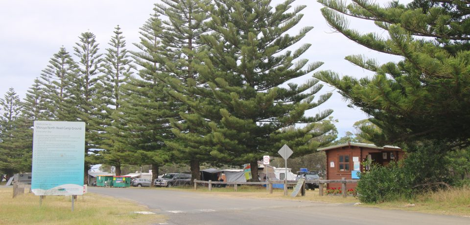 The campsites in Belgravia on the south coast are leaders in sustainability - About Regional