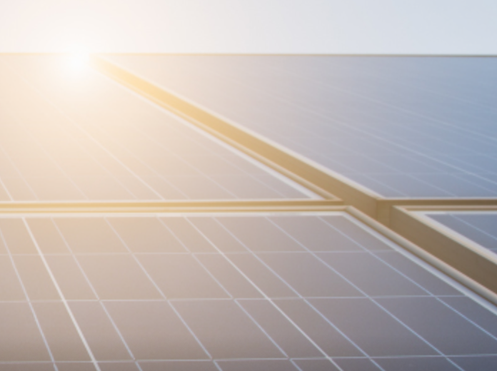 EDF Renewables North America signs Solar PPA with BASF