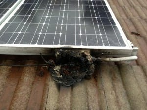 What causes solar panel fires and how can this be easily avoided with Safer Solar?