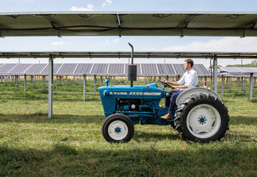 Solar FlexRack supplies trackers for the largest US agrivoltaic research project