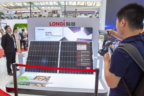 Solar panel giant searches for hydrogen to solve the daily hunger cycle of the sector - Caixin Global